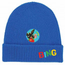 Bing sapka