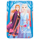 Fleece Plaid frozen - La Reine des Neiges 100x140