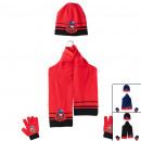 Ladybug scarf hat