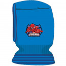 Bonnet Ladybug
