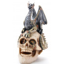 Skull with dragon about 18x12,5x10cm