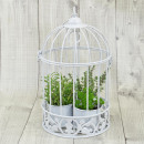 wholesale Haberdashery & Sewing: Metal cage, white, with border and insert for Pfl