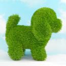 AniPlants, fű figura, '' kutya ''
