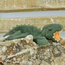 Pillitaps T-Rex Dragonus, 8cm