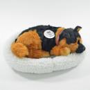Großhandel Puppen & Plüsch: SLEEPTIX Schäferhund im Körbchen 25cm