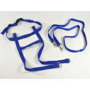wholesale Crockery: Horse leash, role play, blue, in the bag