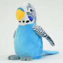 Laber-Budgerigar, blue, which pervades everything,