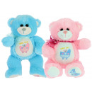 baby bear with blue and pink babybimar trolley 25