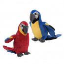 parrot 35 cms with hair ( assorted )