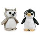 lulo & pinguino