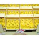 wholesale Home & Living: Chicks Set of 6 in the Display