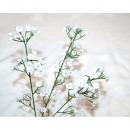 wholesale Decoration: Schleierkraut XL ca. 50cm with 60 flowers
