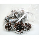 Pine cones decorated with snow 12 pieces,