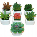 wholesale Decoration: Trendy cacti in white pot plastic 6-fold