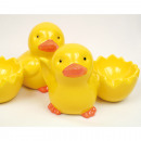 Chick XL with egg cup 10x7, assorted , assorted