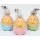 Deco egg with real spring 9x5cm, 3 times assorted