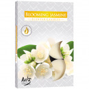 Tealight fragrance 6er jasmine flower in carton