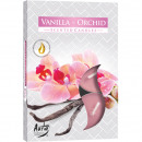 wholesale Home & Living: Tealight scent 6er vanilla orchid in folding.