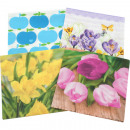 wholesale Household Goods: Napkins DUNI all year 33x33cm different sort