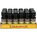 wholesale Drugstore & Beauty: Fragrance Oil Eucalyptus 10ml in glass bottle
