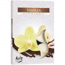 Tealight fragrance 6er vanilla in color packaging