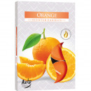 Tealight fragrance 6er orange in color packaging