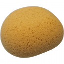 Sponge Badeschwamm natural shape 13x11x7cm in cell