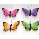 Großhandel Dekoration: Schmetterling 2er Set! je 7x3cm Farben sortiert