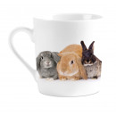 Mug I Love Rabbits