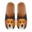 Großhandel Fashion & Accessoires:Pantoffel Beagle 35-38