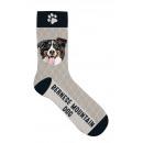 Sock Bernese hegyi kutya 36-41