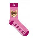 zokni Chihuahua 36-41