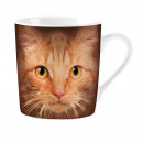 Orange Cat's Eyes Mug