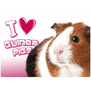 wholesale Home & Living: Place mat I Love Guinea Pigs
