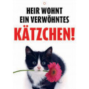 Warnzeichen Kätzchen