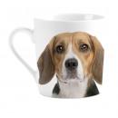 Bögre Szeretlek Beagles