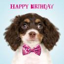 szögletes kártya Születésnap tudom, hogy aranyos v