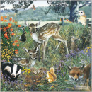 wholesale Gifts & Stationery:CS Forest Animals card