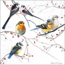 wholesale Gifts & Stationery:CS Birds Perching card