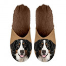 wholesale Shoes: Slipper Berner Sennen 35-38