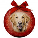 Christmas bauble Frosted Golden Retriever