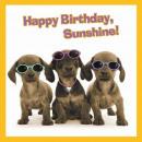 négyzet kártya Happy Birthday Napfény!