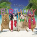 Szögletes Card Guin Pigs Birthday Party