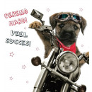 wholesale Gifts & Stationery:Square Card Rockin Pup