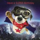 Szögletes Card Puppy Super Pup
