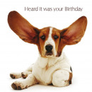 wholesale Gifts & Stationery: square card Basset Hound Big Ears