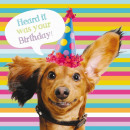 wholesale Gifts & Stationery:square card Sausage Dog