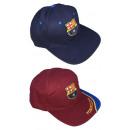 FC Barcelona adult FC Barcelona