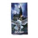 Harry Potter Beach towel Owl