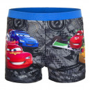 Cars Schwimmboxer